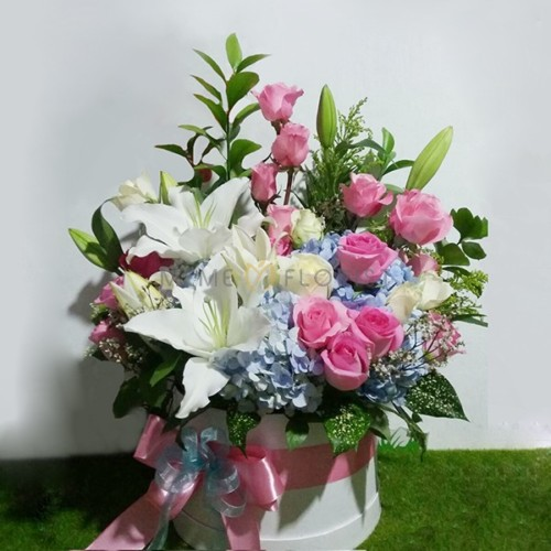 Flower Box SL FB 306